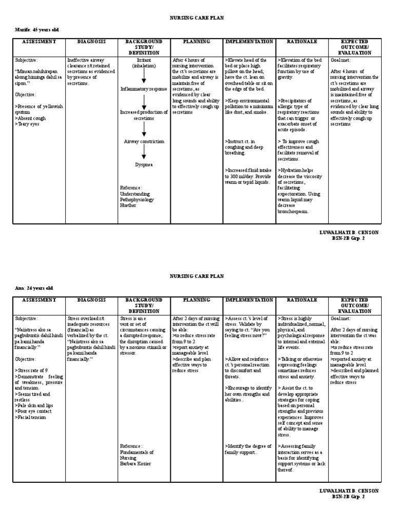 Nursing Care Plans Template