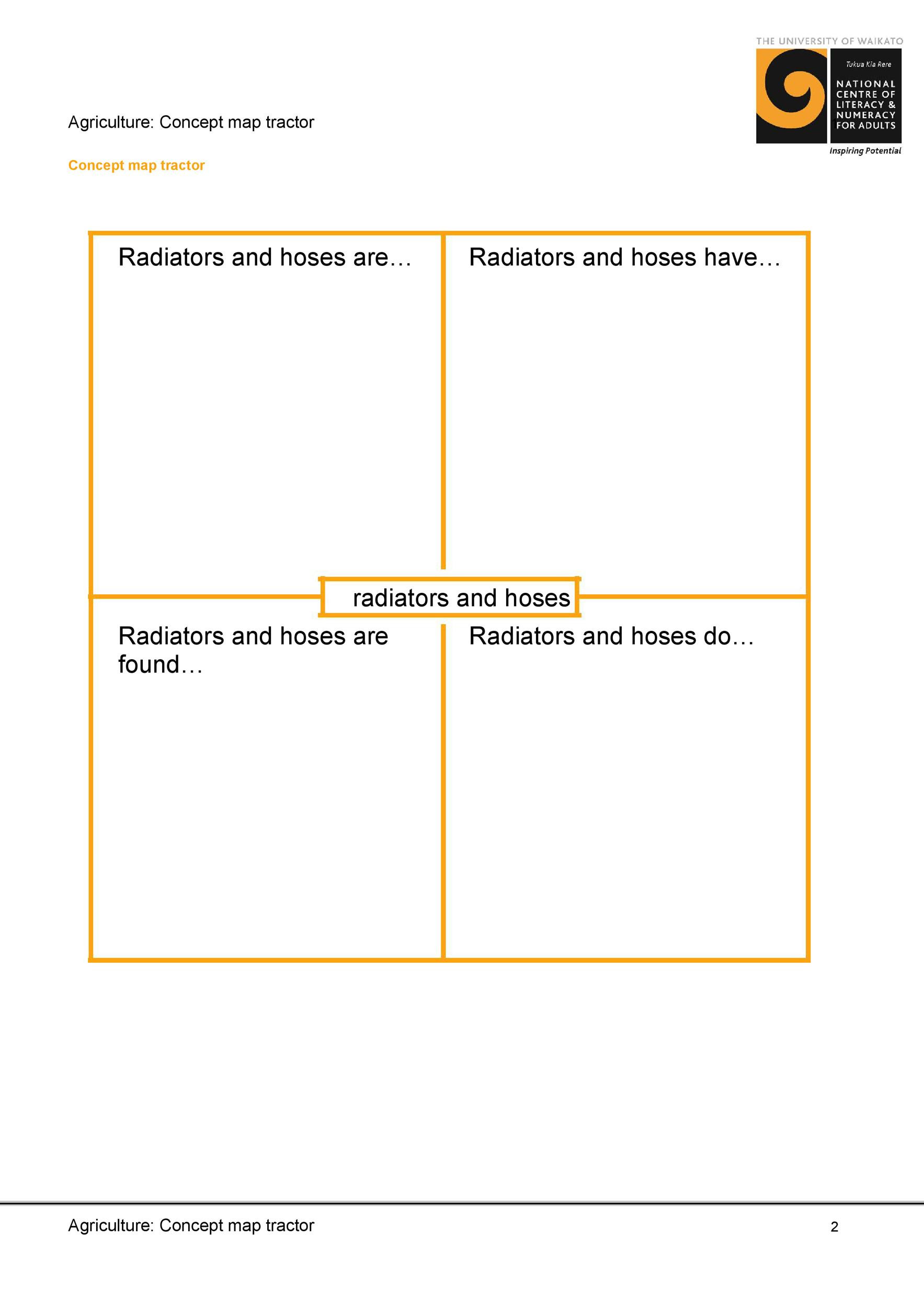 Nursing Concept Mapping Template