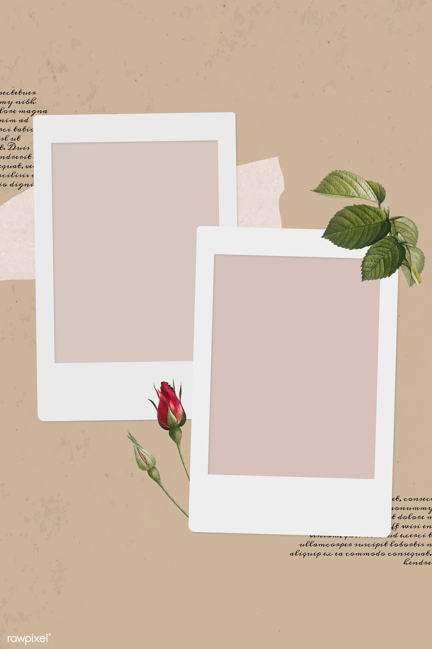 Download premium vector of Blank collage photo frame