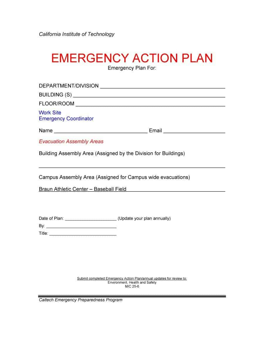 Plan Of Action Template