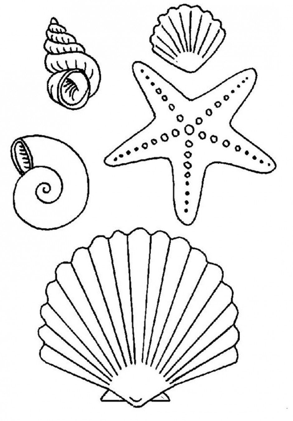 Seashell Template Free Printable