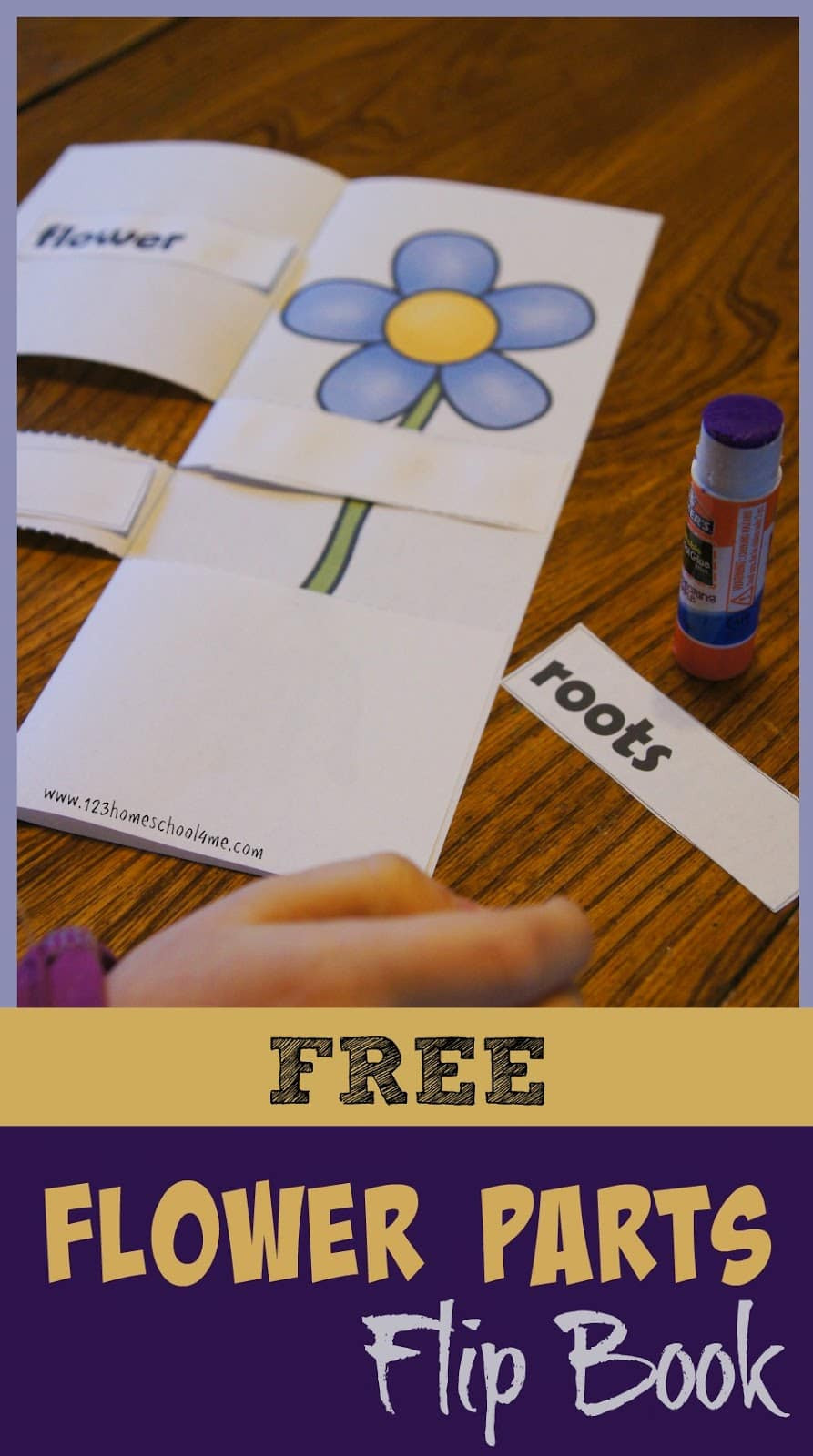 Flip Book Template Printable