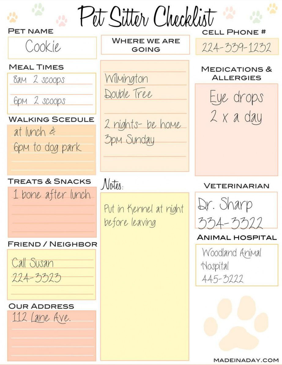 Get Our Example of Dog Sitting Checklist Template for Free