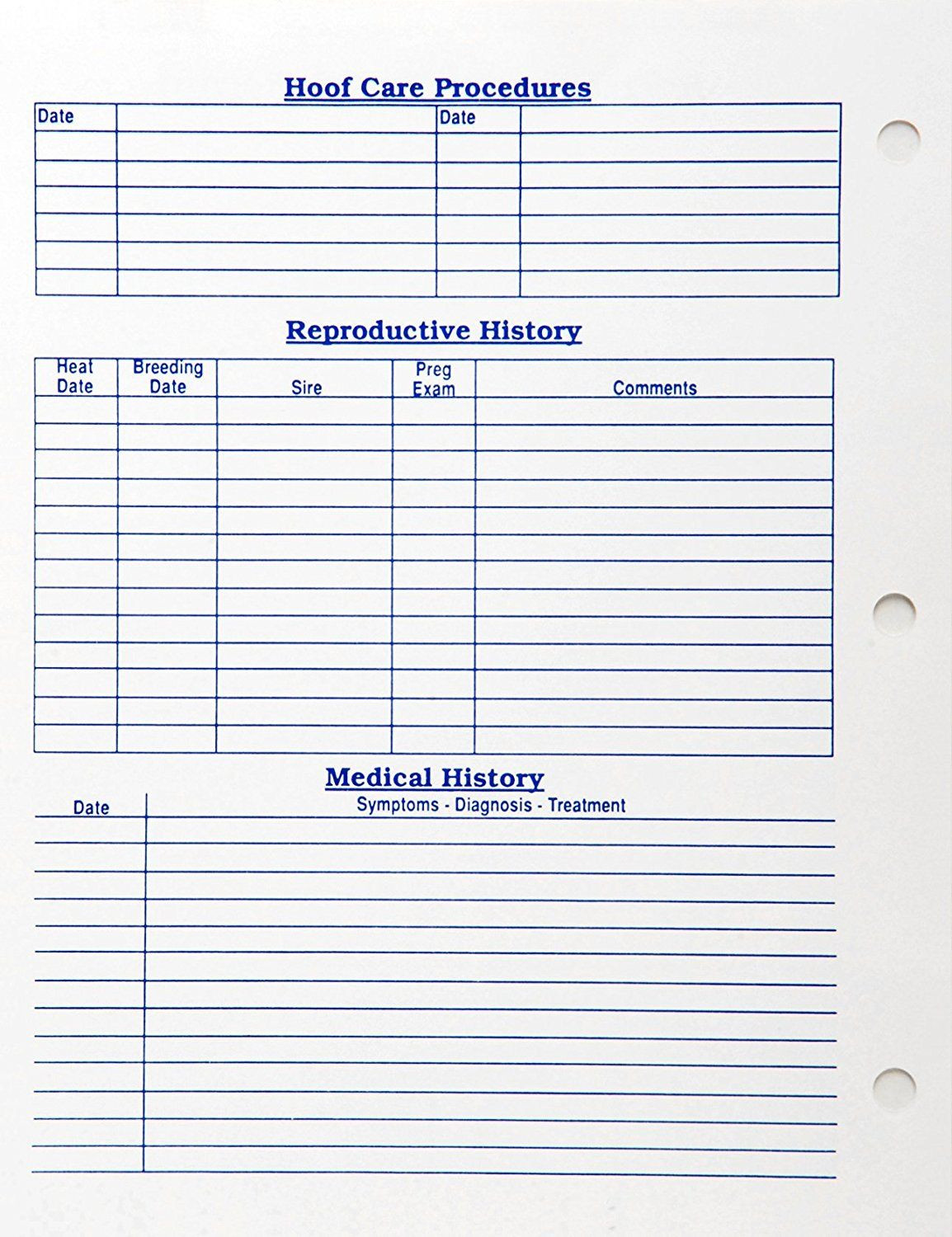 Pet Vaccination Record Template