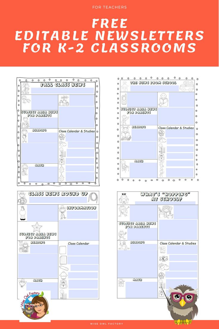 School Newsletter Template Free