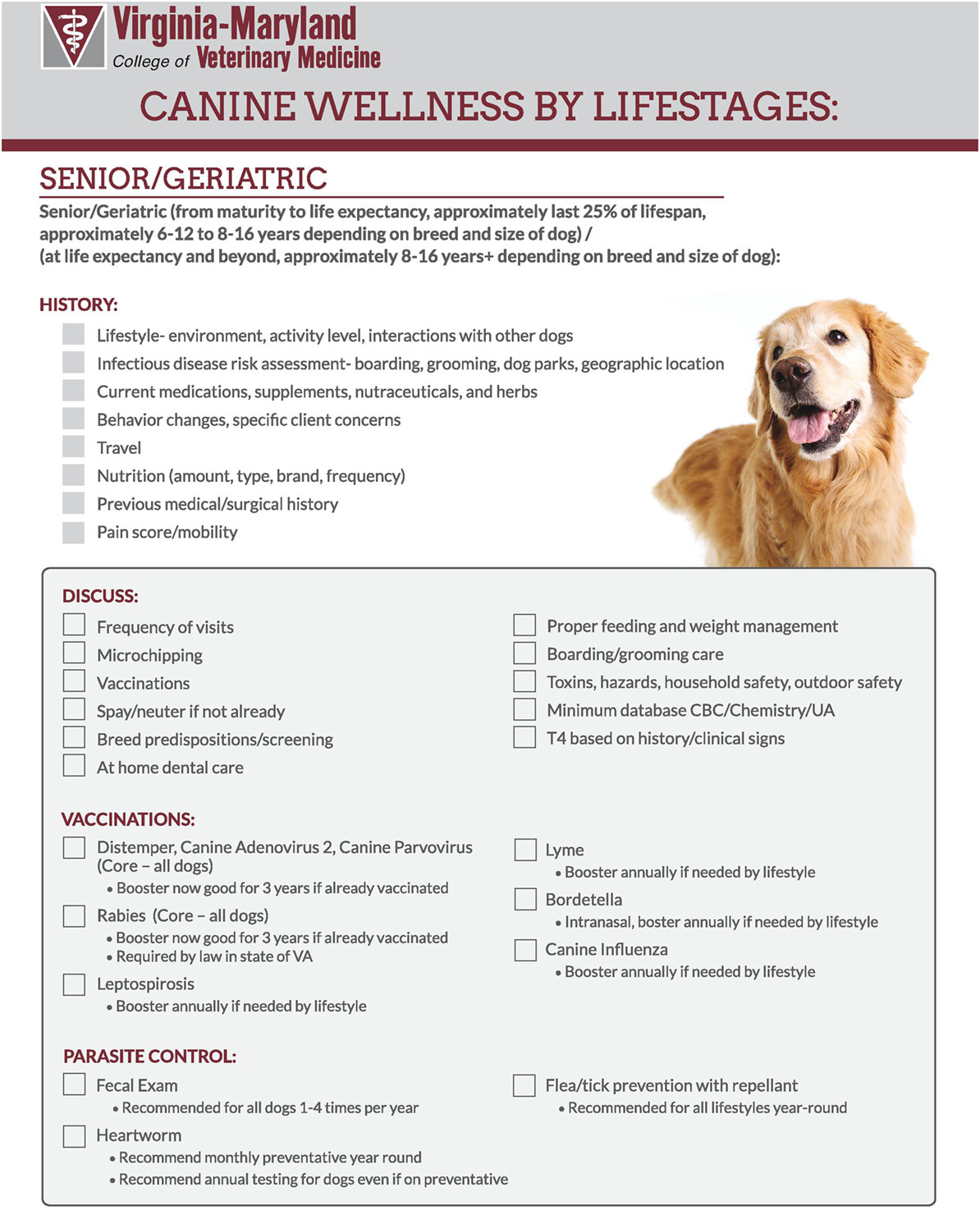 Dog Vaccination Record Template