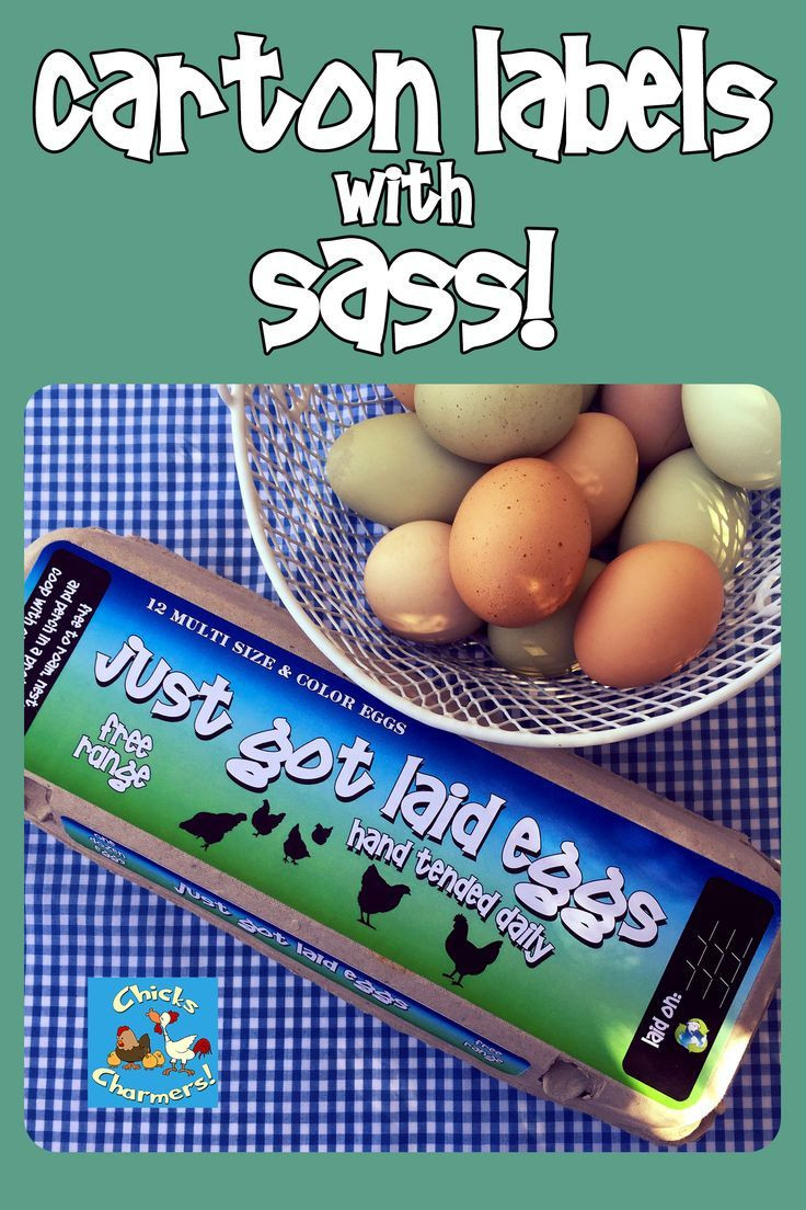 Egg Carton Labels Blues and Greens Custom 3 part label sets