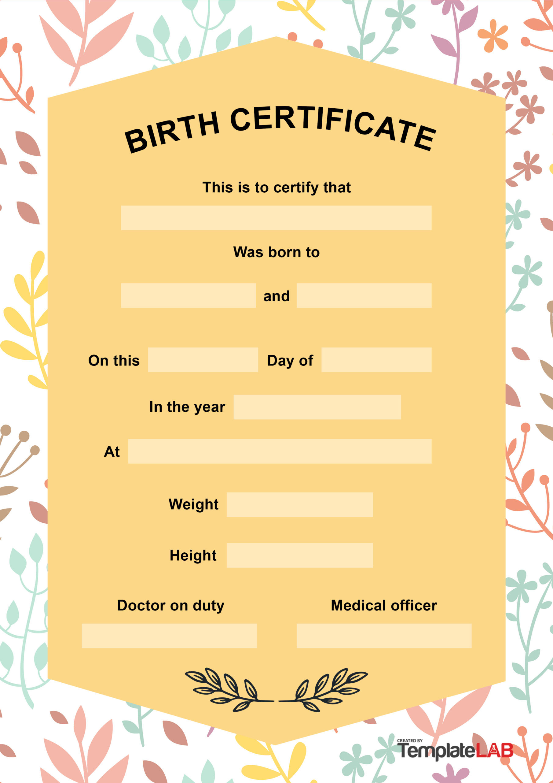 Official Birth Certificate Template